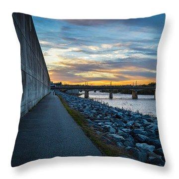 Rva Flood Wall Throw Pillow