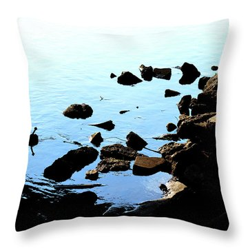 Rver Rocks Throw Pillow