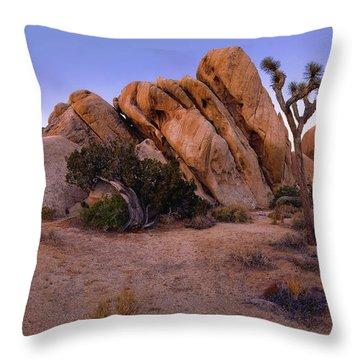 Ryan Mountain Rock Formation Pano View Throw Pillow