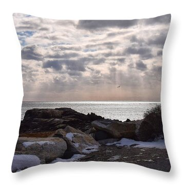 Rye In Winter Throw Pillow