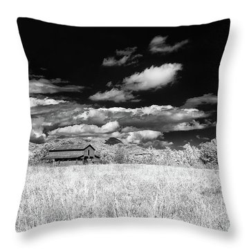 S C Upstate Barn Bw Throw Pillow