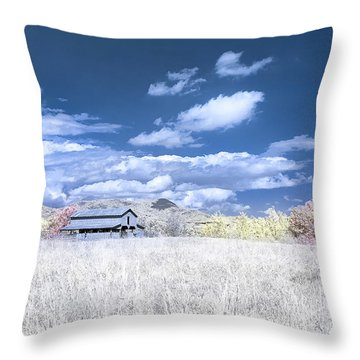 S C Upstate Barn Faux Color Throw Pillow