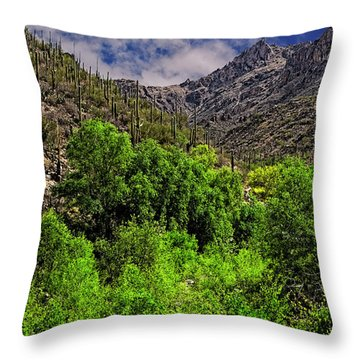 Throw Pillow featuring the photograph Sabino Canyon H33 by Mark Myhaver