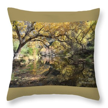 Sabino Canyon In Fall Throw Pillow