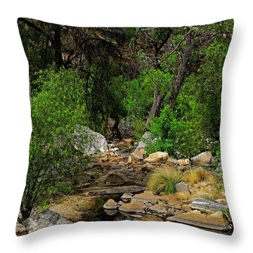 Throw Pillow featuring the photograph Sabino Canyon V49 by Mark Myhaver