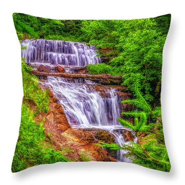 Throw Pillow featuring the photograph Sable Falls by Nick Zelinsky