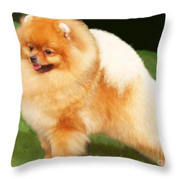 Sable Pomeranian Throw Pillow