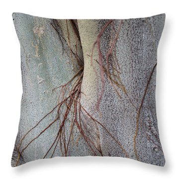 Throw Pillow featuring the photograph Sacred Bodhi Tree Detail With Red Creeper Vines by Jason Rosette