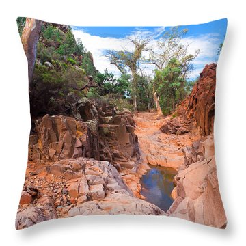Sacred Canyon Throw Pillow by Bill  Robinson