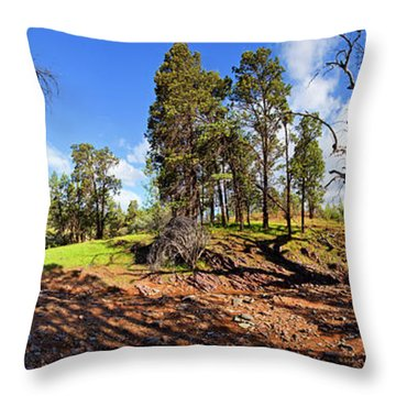 Sacred Canyon, Flinders Ranges Throw Pillow by Bill Robinson