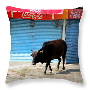 Throw Pillow featuring the photograph Sacred Cow 1 by Randall Weidner
