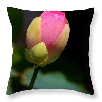 Sacred Lotus Bud 3 Throw Pillow
