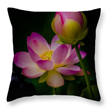 Sacred Water Lily 4 Throw Pillow