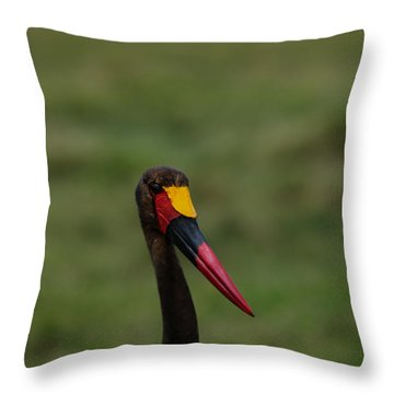 Saddle Billed Stork Throw Pillow by Ramabhadran Thirupattur