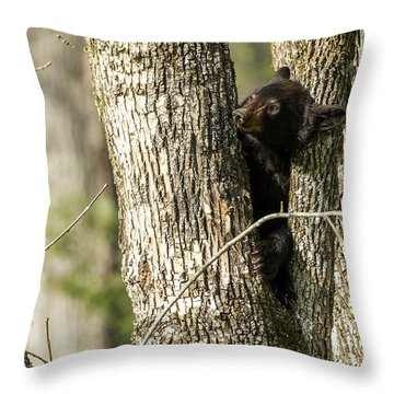 Throw Pillow featuring the photograph Safe From Harm by Everet Regal
