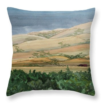 Sage Brush Field Throw Pillow by Bethany Lee