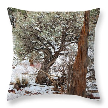 Sage Bush Grand Canyon Throw Pillow by Donna Greene