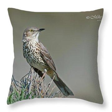 Sage Thrasher Throw Pillow