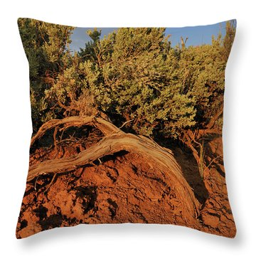 Sagebrush At Sunset Throw Pillow