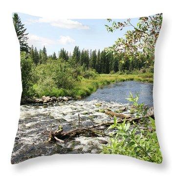 Saginas Lake Throw Pillow