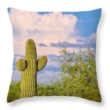 Saguaro And Mesquite In Monsoon Season Throw Pillow