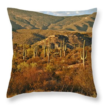 Saguaro Cactus - A Very Unusual Looking Tree Of The Desert Throw Pillow by Christine Till