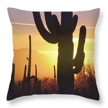 Saguaro Cactus Golden Sunset Mountain Throw Pillow by Andrea Hazel Ihlefeld
