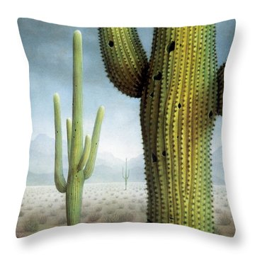 Saguaro Cactus Landscape Throw Pillow