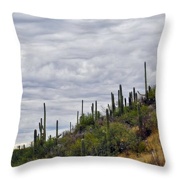 Throw Pillow featuring the photograph Saguaro Hill Top by Gina Savage