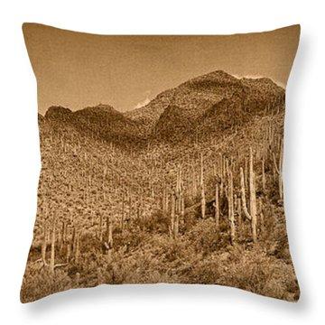 Saguaro Hillsides Tint  Throw Pillow