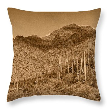 Saguaro Hillsides Tint  Throw Pillow