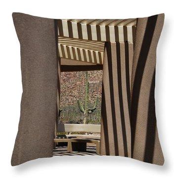 Saguaro National Park Throw Pillow by Lois Bryan