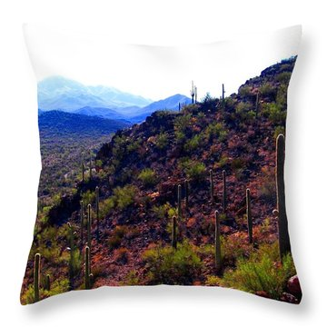 Throw Pillow featuring the photograph Saguaro National Park Winter 2010 by Michelle Dallocchio