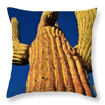 Saguaro Reaching To The Sky Throw Pillow