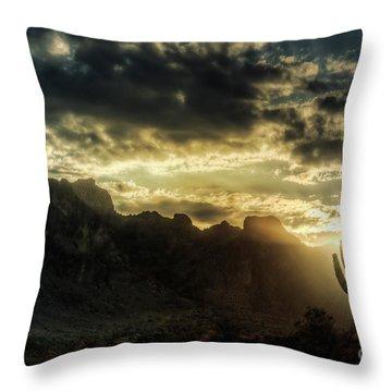 Saguaro Sunrise  Throw Pillow by Saija  Lehtonen