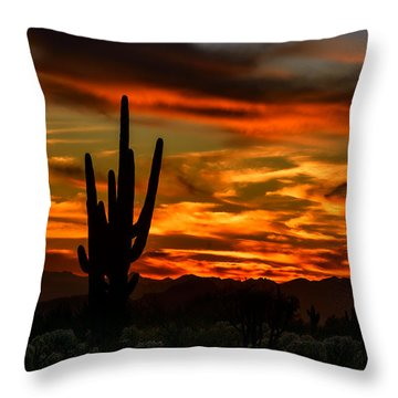 Saguaro Sunset H51 Throw Pillow