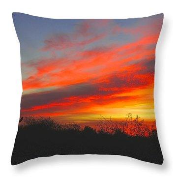 Saguaro Winter Sunrise Throw Pillow