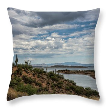 Throw Pillow featuring the photograph Saguaro With A Lake View  by Saija Lehtonen