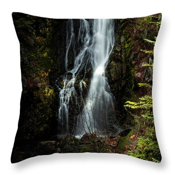 Sahale Falls Throw Pillow