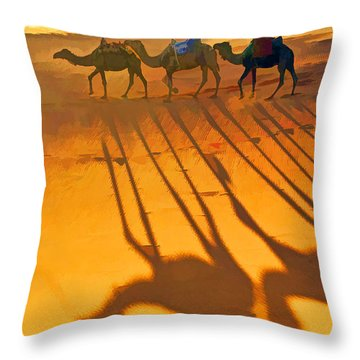 Sahara Shadows Throw Pillow