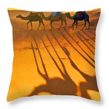 Sahara Shadows Throw Pillow by Dennis Cox WorldViews