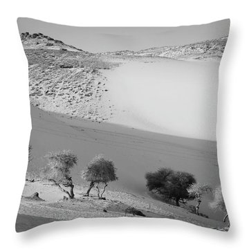 Sahara Throw Pillow