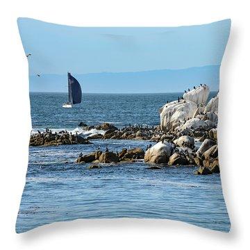 Throw Pillow featuring the photograph Sailboat At Bird Rock by Susan Wiedmann