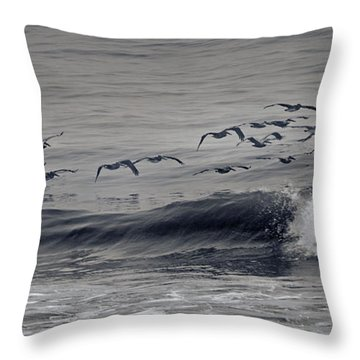 Sailing Along Throw Pillow by Betsy Knapp