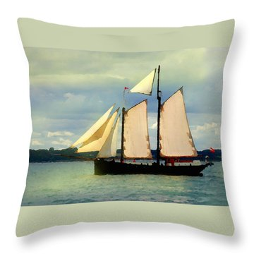 Sailing The Sunny Sea Throw Pillow