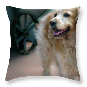 Saint Shaggy Art 10 Throw Pillow