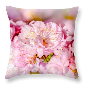 Throw Pillow featuring the photograph Sakura Cherry Flower - Wedding Bouquet by Alexander Senin