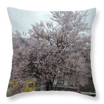 Sakura, Japan's Ephemeral Also Beautiful Flowers Throw Pillow