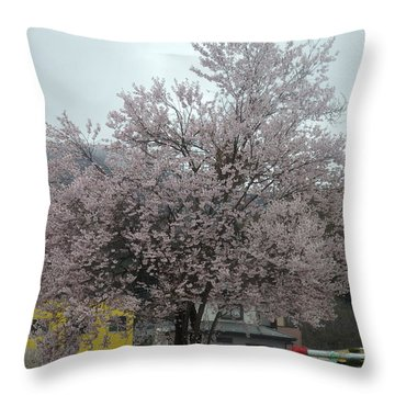 Sakura, Japan's Ephemeral Also Beautiful Flowers Throw Pillow