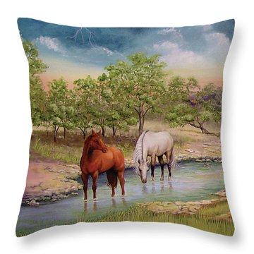 Salado 2 Throw Pillow